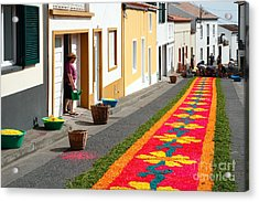 Making Flower Carpets Acrylic Print by Gaspar Avila