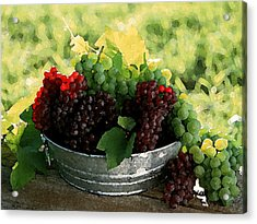 Making Wine Acrylic Print by Cole Black