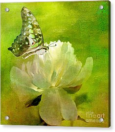 Malachite On Peony Acrylic Print by Lois Bryan