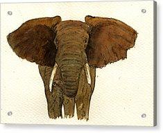 Male Elephant Acrylic Print by Juan  Bosco