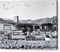 Malibu Beach House - 1960 Acrylic Print