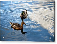 Mallards Lake Hopatcong Nj Acrylic Print
