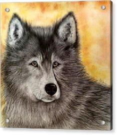 Mama Wolf Acrylic Print