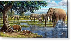 Mammals Of The Miocene Era Acrylic Print