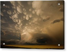 Mammatus Clouds Over Fields Acrylic Print by Roger Hill/science Photo Library