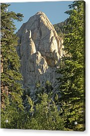 Mammoth Rock Acrylic Print by Peter Hennessey