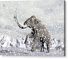 Mammoth Walking Through A Blizzard Acrylic Print