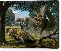 Mammoths And Sabre-tooth Cats Acrylic Print