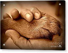Man And Dog Acrylic Print