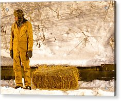 Man And Hay Acrylic Print