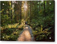 Man And Woman Hikers Admiring Sunbeams Streaming Through Trees Acrylic Print by PamelaJoeMcFarlane