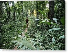 Man Jogging In Forest Along Mountain To Sea Trail, Asheville, North Carolina, Usa Acrylic Print by Andy Wickstrom / Aurora Photos
