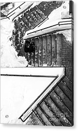 Man On Staircase Concord New Hampshire 2015 Acrylic Print by Edward Fielding
