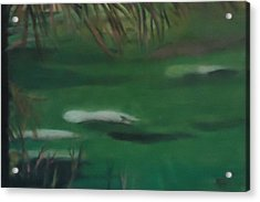 Manatee's Winter Home Acrylic Print by Betty Pimm