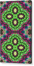 Mandala 112 For Iphone Double Acrylic Print by Terry Reynoldson