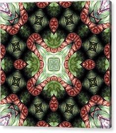Mandala 113 Acrylic Print by Terry Reynoldson