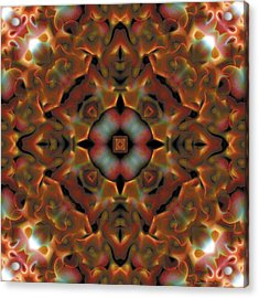 Mandala 119 Acrylic Print by Terry Reynoldson