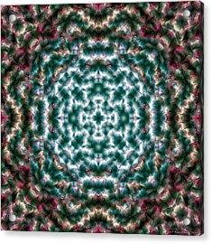 Mandala 122 Acrylic Print by Terry Reynoldson