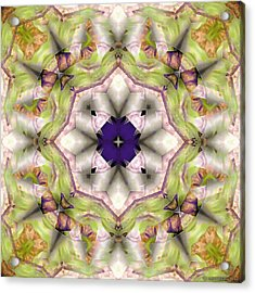 Mandala 127 Acrylic Print by Terry Reynoldson