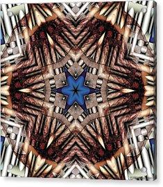 Acrylic Print featuring the digital art Mandala 13 by Terry Reynoldson