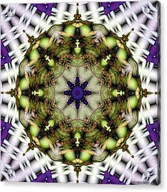 Acrylic Print featuring the digital art Mandala 21 by Terry Reynoldson