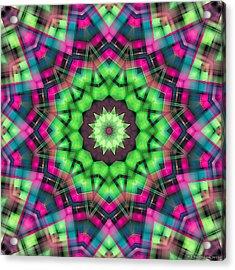 Acrylic Print featuring the digital art Mandala 29 by Terry Reynoldson