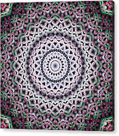 Acrylic Print featuring the digital art Mandala 38 by Terry Reynoldson