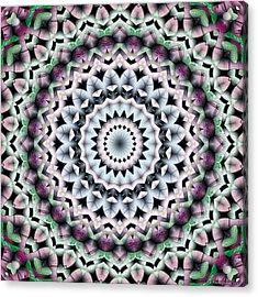 Acrylic Print featuring the digital art Mandala 40 by Terry Reynoldson