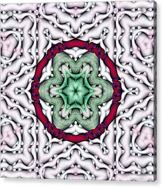 Acrylic Print featuring the photograph Mandala 7 by Terry Reynoldson