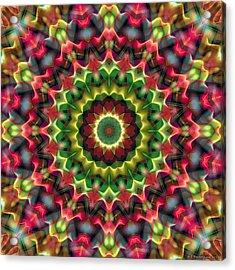 Acrylic Print featuring the digital art Mandala 70 by Terry Reynoldson