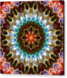 Acrylic Print featuring the digital art Mandala 79 by Terry Reynoldson