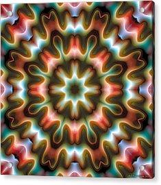 Acrylic Print featuring the digital art Mandala 80 by Terry Reynoldson