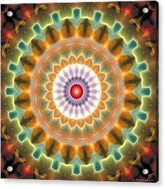 Mandala 87 Acrylic Print