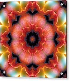 Acrylic Print featuring the digital art Mandala 91 by Terry Reynoldson