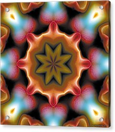 Acrylic Print featuring the digital art Mandala 94 by Terry Reynoldson