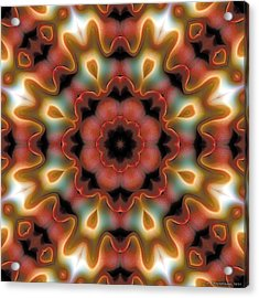Mandala 96 Acrylic Print by Terry Reynoldson
