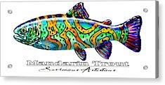 Mandarin Trout Savlenicus Artisticus Acrylic Print by Savlen Art
