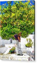 Mandarine Tree Painting Acrylic Print by Magomed Magomedagaev