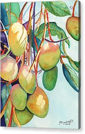 Mangoes Acrylic Print