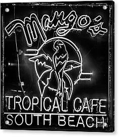 Mango's South Beach Miami - Black And White - Square Acrylic Print