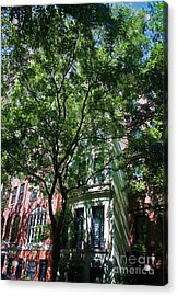 Acrylic Print featuring the photograph Manhattan Upper East Side Late Summer by Andy Prendy