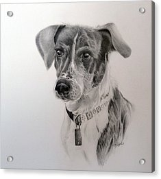 Acrylic Print featuring the drawing Man's Best Friend by Lori Ippolito