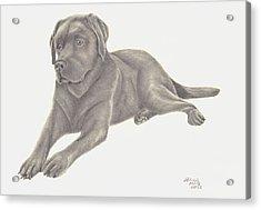 Man's Best Friend Acrylic Print by Patricia Hiltz