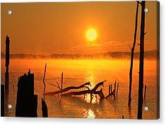 Mantis Sunrise Acrylic Print by Roger Becker