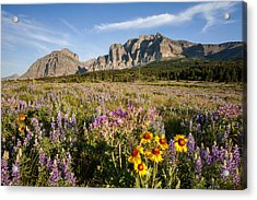 Acrylic Print featuring the photograph Many Glacier Spring by Jack Bell