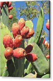 Manzanas Rojas Acrylic Print