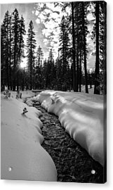 Manzanita Creek Acrylic Print by Randy Wood