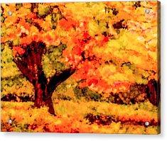 Maple Hill Acrylic Print