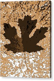 Maple Leaf Brown  Hues Acrylic Print by R Muirhead Art