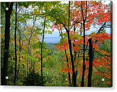Acrylic Print featuring the photograph Maples Against Lake Superior - Tettegouche State Park by Cascade Colors